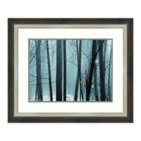 Amanti Art Spring Mist II 30 -Inch X 25 -Inch Framed Wall Art