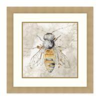 Amanti Art Queen Bee II by Eva Watts 25 -Inch X 25 -Inch Framed Wall Art