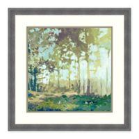 Amanti Art Bellewoods by Edward Selkirk 26 -Inch Square Framed Wall Art