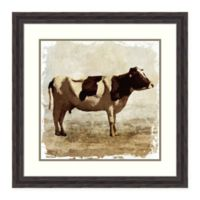 Amanti Art Cow 29.38-Inch Square Framed Wall Art