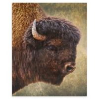 Christopher Knight Collection Big Shaggy 18-Inch x 24-Inch Wrapped Canvas Wall Art