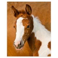 Christopher Knight Collection Molly 18-Inch x 24-Inch Wrapped Canvas Wall Art