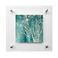 Blue Birch 24-Inch Square Acrylic Wall Art