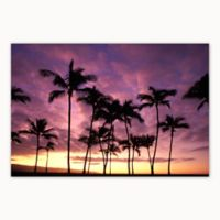 Christopher Knight Collection Haleiwa Sunset 18-Inch x 24-Inch Wood Wall Art