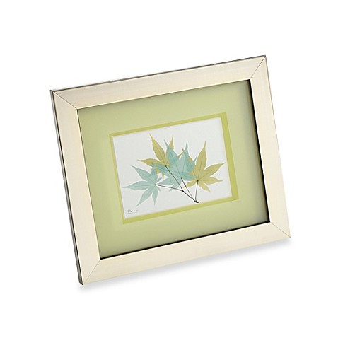 Buy X Ray Lily Pad Wall Art From Bed Bath Beyond