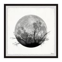 Parvez Taj Forest Moon 24-Inch Squared Framed Wall Art