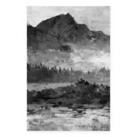 Parvez Taj Dark and Mysterious Mountain 30-Inch x 45-Inch Canvas Wall Art