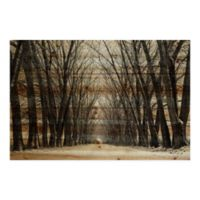 Parvez Taj Tree Path II 12-Inch x 8-Inch Pinewood Wall Art