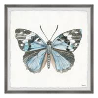 Parvez Taj Ocean Blue Shade Butterfly 12-Inch Squared Framed Wall Art