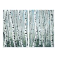 Parvez Taj Skinny Tree Trunks III 16-Inch x 12-Inch Canvas Wall Art Set