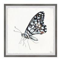 Parvez Taj Blue and Black Mariposa 12-Inch Squared Framed Wall Art