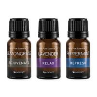 SpaRoom® 3-Pack Everyday Essential Oils
