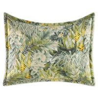 Tommy Bahama® Cuba Cabana King Pillow Sham in Green
