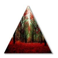 Courtside Market™ Red Forest Multicolor Canvas Wall Art