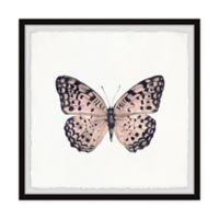Marmont Hill Pink and Black Butterfly 12-Inch Squared Framed Wall Art