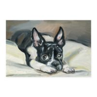 Marmont Hill Frenchie Eyes II 12-Inch x 8-Inch Canvas Wall Art