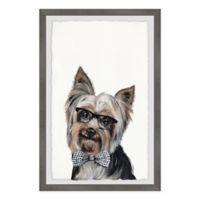 Marmont Hill Rockstar Puppy 12-Inch x 18-Inch Framed Wall Art