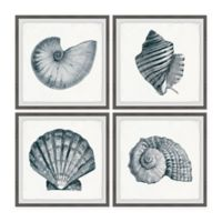 Marmont Hill Gray Sea Shells 24-Inch Squared Framed Wall Art Set