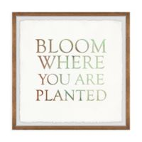 Marmont Hill Bloom Where You Are Planted II 12-Inch Squared Framed Wall Art
