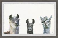 Marmont Hill Llama Squad 36-Inch x 24-Inch Framed Wall Art