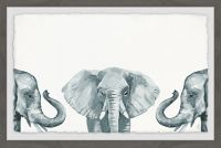 Marmont Hill Elephant Poses 24-Inch x 16-Inch Framed Wall Art