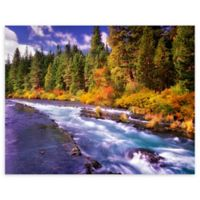 Christopher Knight Collection® Metolius River 18-Inch x 24-Inch Canvas Wall Art