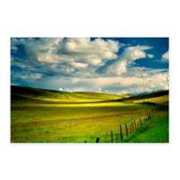 Zumwalt Prairie 18-Inch x 24-Inch Multicolor Canvas Wall Art