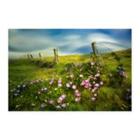 Morning Glory Flowers Multicolor Canvas Wall Art
