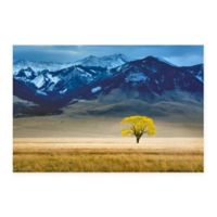 Lone Tree In Fall Pasture 18-Inch x 24-Inch Multicolor Canvas Wall Art