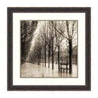 Amanti Art® Yk Studios Nature Photography 29.38-Inch Square Acrylic Framed Print in Brown/grey