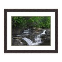 Amanti Art® Tim Fitzharris Nature Photography 33.38-Inch x 27.38-Inch Acrylic Framed Print in Gr