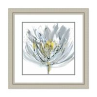 Amanti Art® Rebecca Meyers Floral 27.75-Inch Square Acrylic Framed Print in White/grey