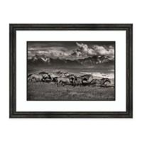 Amanti Art® Lisa Dearing Nature Photography 35.38-Inch x 27-Inch Acrylic Framed Print in Grey/bl