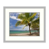 Amanti Art® Tim Fitzharris Nature Photography 26.75-Inch x 22.75-Inch Acrylic Framed Print in Gr