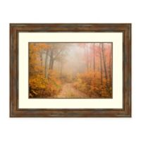 Amanti Art® Patrick Zephyr Nature Photography 43.88-Inch x 33.88-Inch Acrylic Framed Print in Br