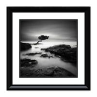 Amanti Art® Rob Cherry Nature Photography 25-Inch Square Acrylic Framed Print in Grey/black