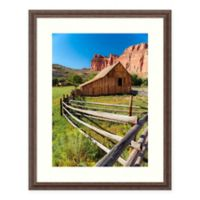 Amanti Art® Tim Oldford Nature Photography 26.5-Inch x 33.5-Inch Acrylic Framed Print in Brown