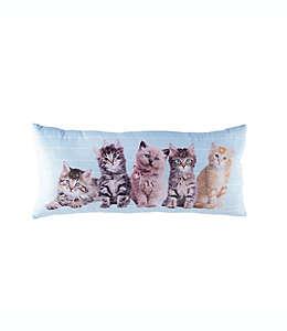 Cojín decorativo alargado Rachael Hale® Animals Cat Line-Up