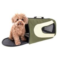 Airline Approved Sporty Folding Zippered Mesh Medium Pet Carrier in Green/Khaki