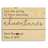 Direct Designs Amazing Adventures 10.6-Inch x 14-Inch Wood Wall Art