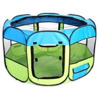 All-Terrain Medium Collapsible Travel Pet Playpen in Blue/Yellow