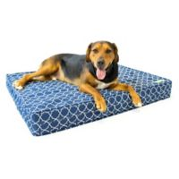 eLuxurySupply® Large Gel Memory Foam Orthopedic Dog Bed in Blue