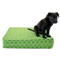 eLuxurySupply® Large Gel Memory Foam Orthopedic Dog Bed in Green