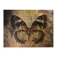 Butterfly 40-Inch x 30-Inch Canvas Wall Art