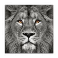 """Empire Art Direct """"King Of The Jungle"""" Glass Wall Art in Black/White"""