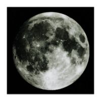 "Empire Art Direct ""Full Moon"" Glass Wall Art in White/Black"