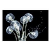 Dancing Dandelions 48-Inch x 32-Inch Glass Wall Art