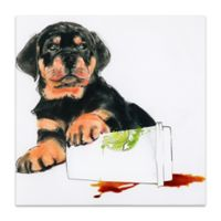 "Empire Art Direct ""Java's Paw"" Multicolor Glass Wall Art"