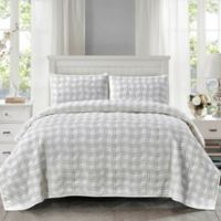Wonder Home Sebastian Quilted 3-Piece King Quilt Set in Green