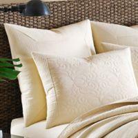 Tommy Bahama® Nassau European Pillow Sham in Ivory